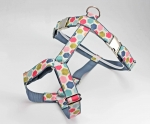 Dog harness with colorful hexagon pattern, geometric, webbing in gray, harness for dogs