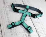 Dog harness, dogs, dots, turquoise, mint, black, mint green, polka dots, dog, noble, trendy, modern, bulldog, labrador