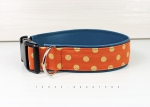 Dog collar with dots on orange, with leatherette in petrol, collar for dogs